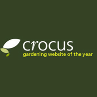 Crocus gardening flowers trees garden gifts