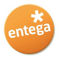 Entega stand 2010